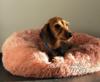Roze hondenmand