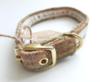 Teckel halsband