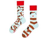 Teckel sokken many mornings