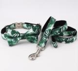 Halsband, riem, vlinderdas set